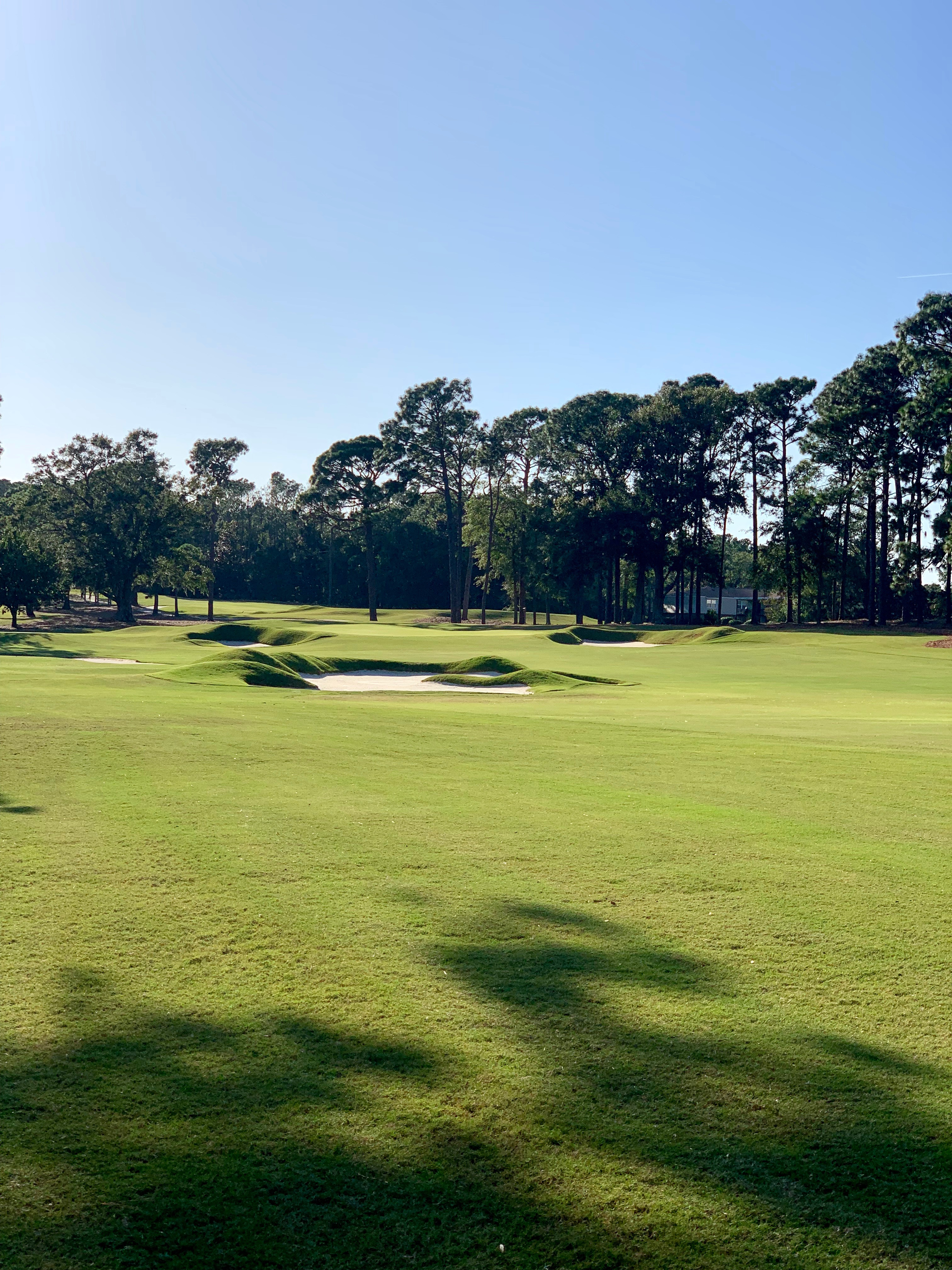 Cape Fear Country Club<br/>Course Renovation and Restoration