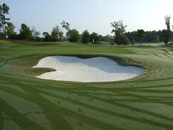 Eagle Point Golf Club<br/>   Course Renovation and Restoration