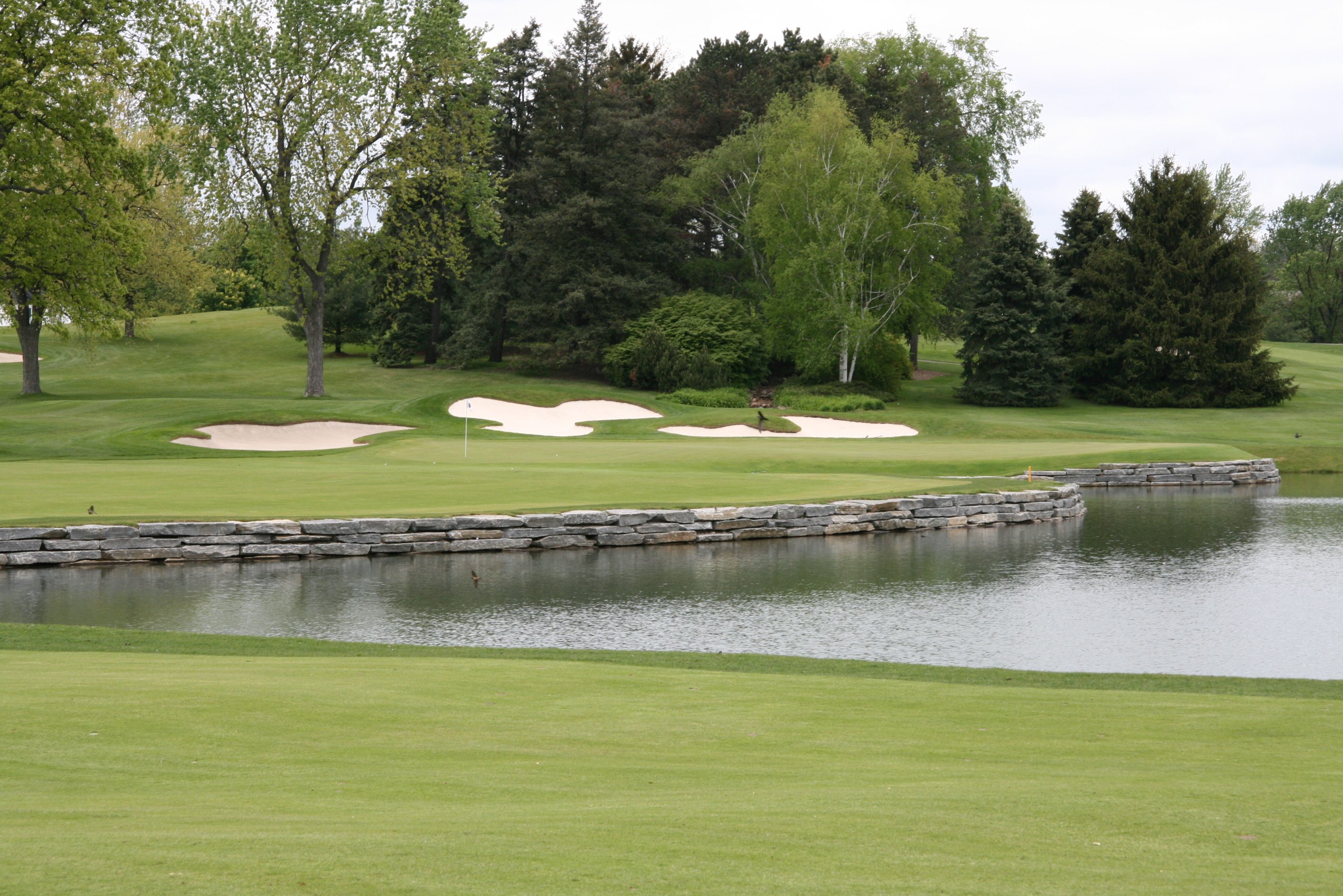 Oakland Hills Country Club<br/>   Pond, Stream, & Wetland Construction